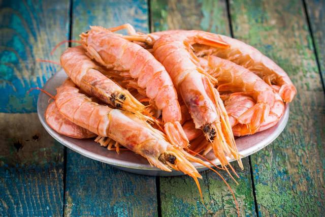 10 интересных фактов о креветках