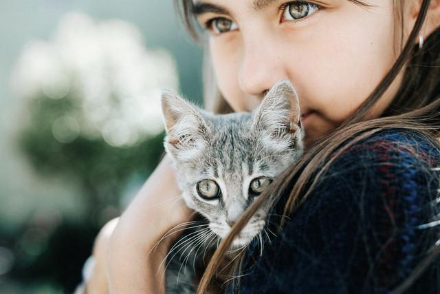 Как понять нужно ли вам заводить собаку или кота