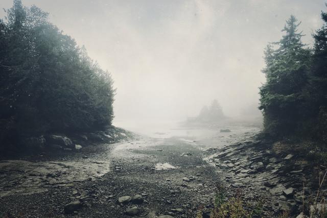 Чарующие фотографии осенних туманов