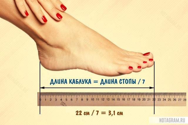 Какой высоты можно носить каблуки женщинам