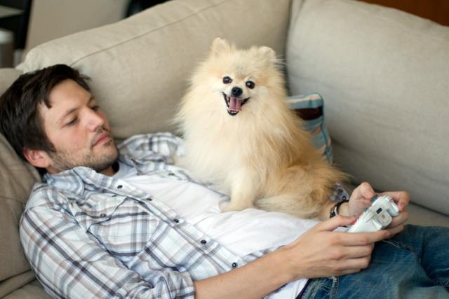 ТОП-10 самых маленьких пород собак в мире
