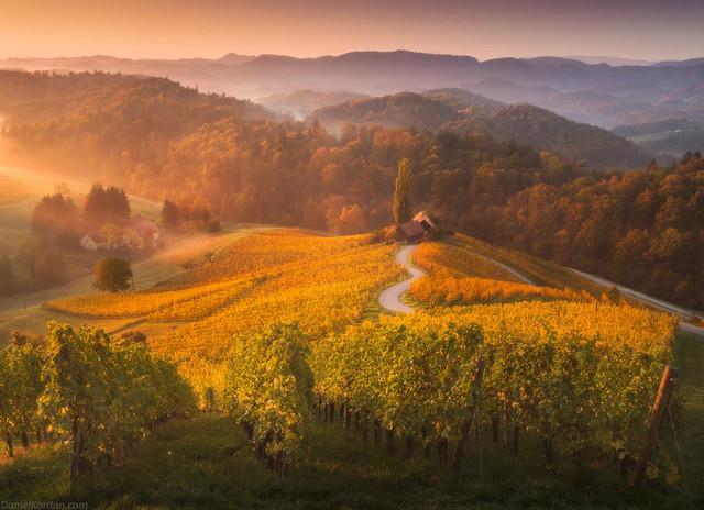 Самые красивые фото настоящей золотой осени