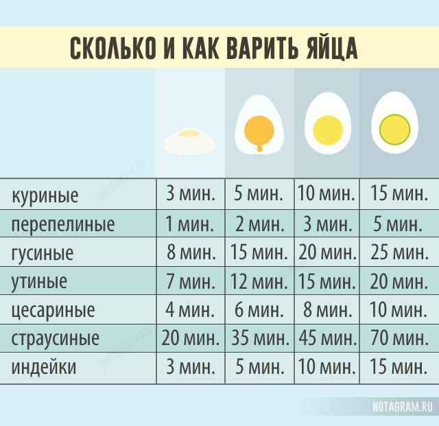 Сколько и как варить яйца: полезная инфографика