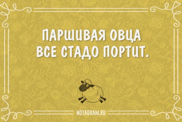 100 самых ярких русских народных пословиц и поговорок