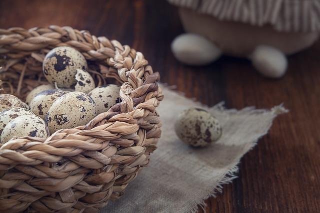 Что вкусного приготовить из перепелиных яиц