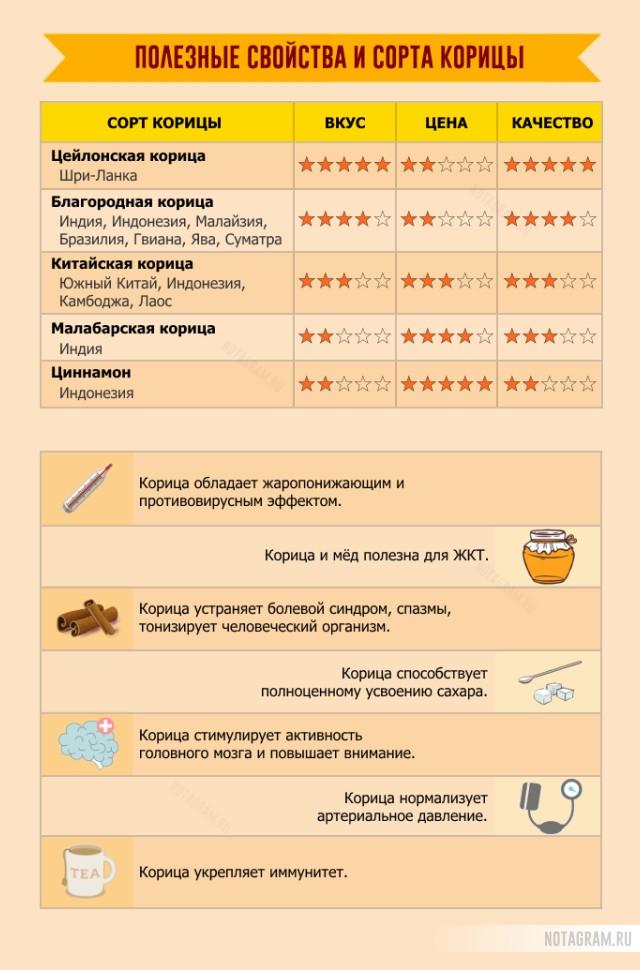 Полезные свойства и сорта корицы: инфографика
