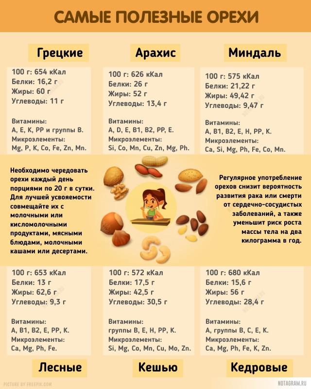 Какие орехи самые полезные: инфографика
