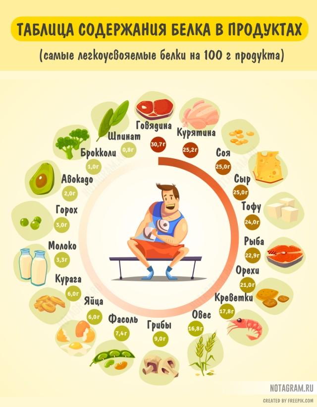 Где больше всего белка: полезная инфографика
