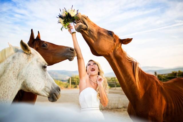 Самые яркие примеры свадебных фото