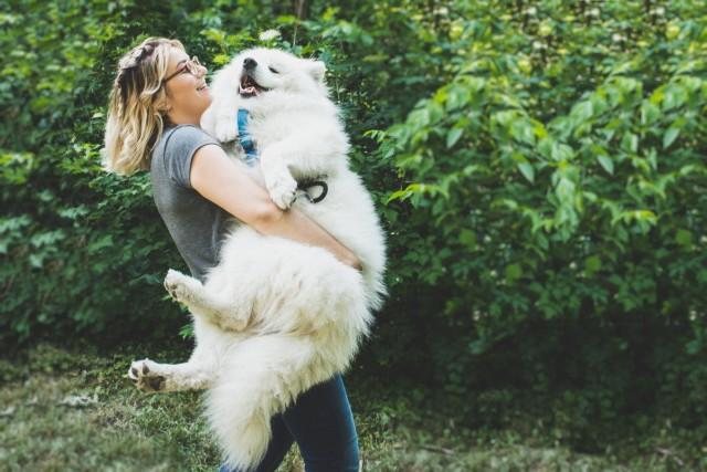 Преимущества наличия домашнего животного