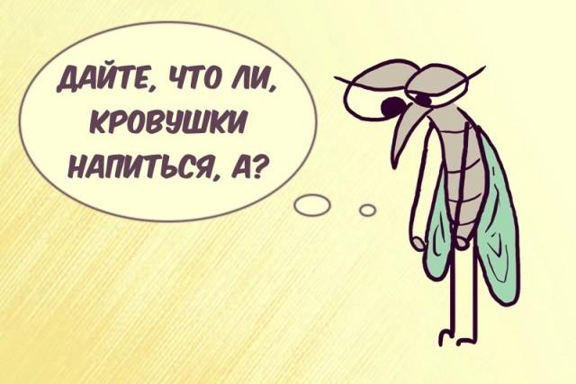Почему комары кусают одних больше чем других