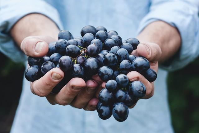 Что необычного можно приготовить из винограда